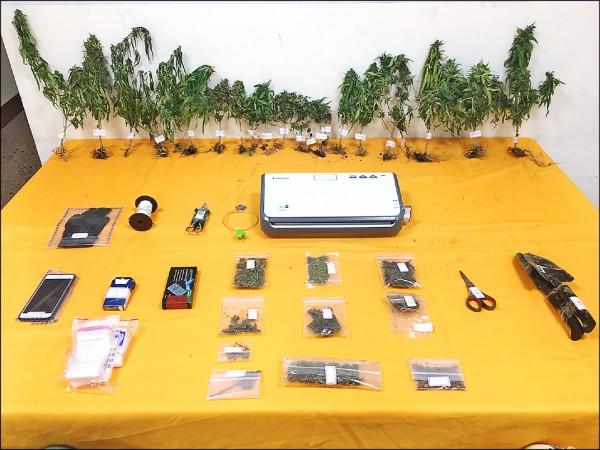 警方查獲20多株大麻。(記者王捷翻攝)
