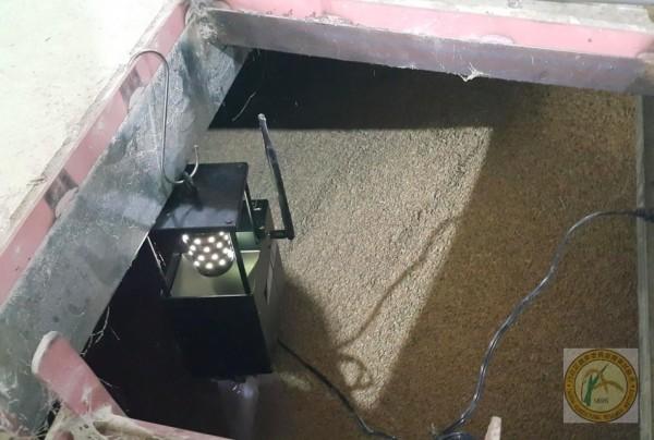 貯藏糧倉上頭設置特殊LED光波誘蟲,系統感測害蟲密度,管理就能啟動應變。(農業試驗所提供)