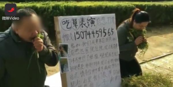 中國一對夫妻,當街替罹患白血病的9歲兒子籌措醫療費用,又礙於沒有才藝,就在路人面前開始表演吃草。(圖擷取自YouTube)