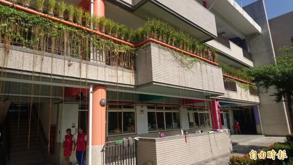 稻米長在教室走廊的水管上,六甲國中魚米共生農園稱奇。(記者楊金城攝)