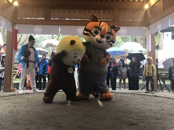台日吉祥物相撲PK戰,「虎爸」雖惜敗,但拼到底的精神贏得滿堂彩。(台中市新聞局提供)