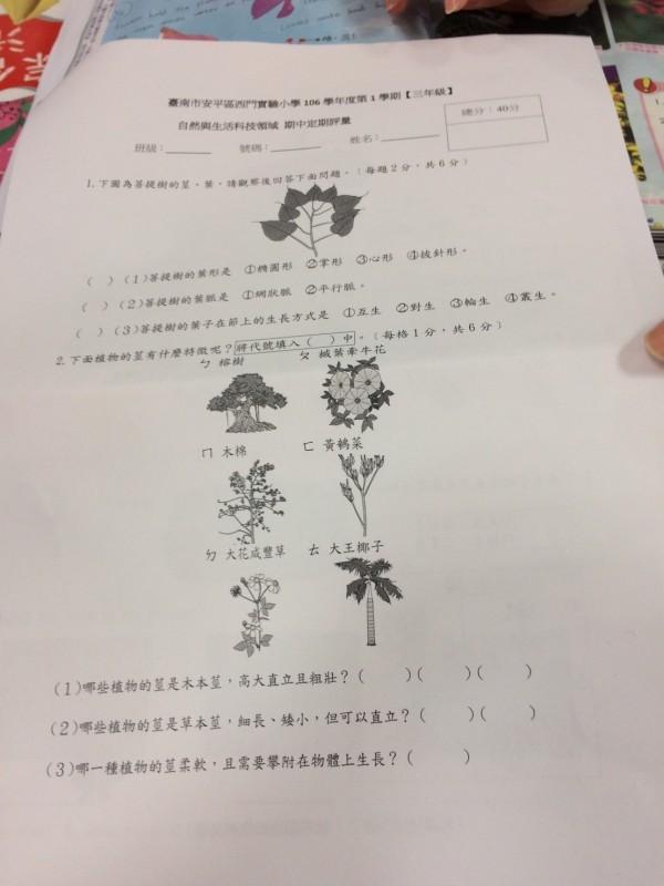 西門實驗小學,有中英雙語自然科考卷。(記者洪瑞琴翻攝)