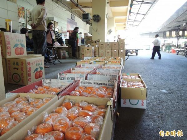 今天立委質詢時指出,今天雲嘉地區橘子豐收,價格已經開始下探,恐步上香蕉後塵。(資料照,記者劉婉君攝)
