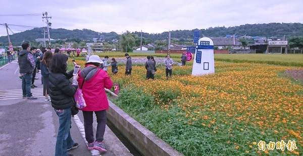 桃園花彩節壓軸的大溪展場,民眾扶老攜幼把握最後一天活動前往賞花。(記者李容萍攝)