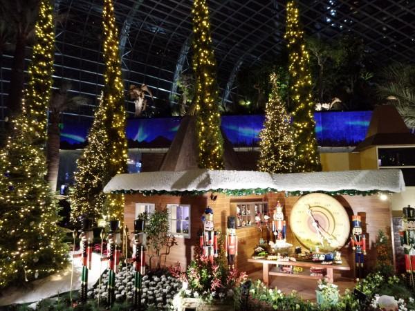 站在被耶誕樹圍繞的小木屋旁抬頭看,可隱約看見迷幻的極光正在舞動。(Sylvia提供)