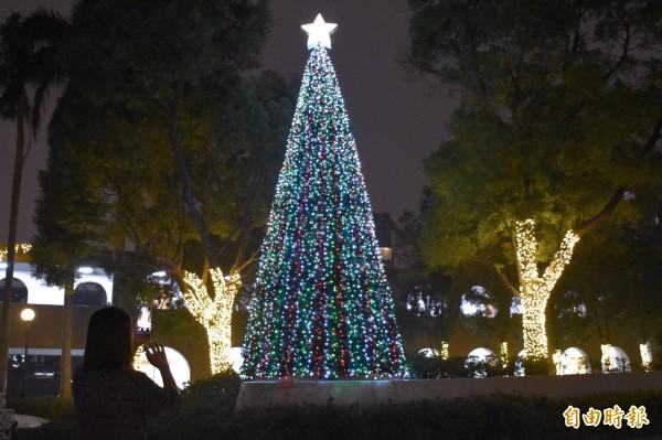 中原大學以逾10萬顆黃白、亮紅色系燈泡為主軸,裝飾3層樓高的耶誕樹主燈及校園景致。(記者李容萍攝)