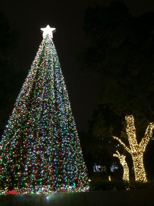 中原大學以逾10萬顆黃白、亮紅色系燈泡為主軸,裝飾3層樓高的耶誕樹主燈及校園景致。(中原大學提供)