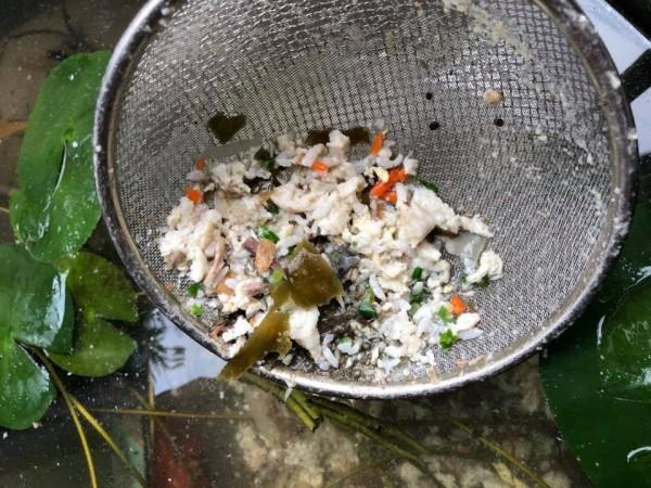 機車騎士不明原因嘔吐,吐出的物體全在住戶屋外的魚盆內,被網友形容為「餵魚」。(圖擷取自影片)