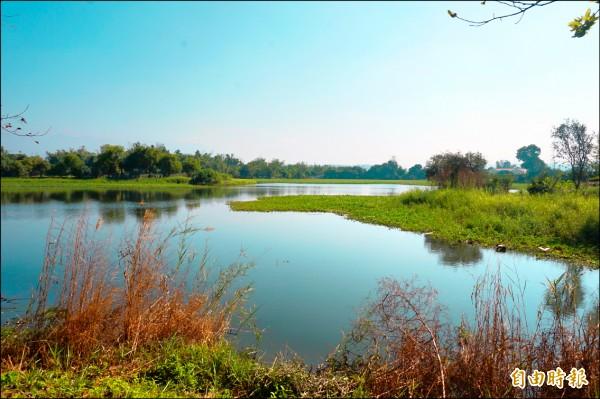 嘉義縣大林鎮鄉道嘉一0四線上林里路段旁,有處面積六公頃、堪稱鎮內最大的頂員林灌溉埤塘,上林社區與公所爭取列入地方級重要濕地。(記者曾迺強攝)