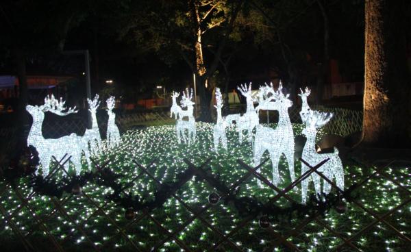 屏東公園有超過百年歷史,今年耶誕節主打北歐風,草地上悄悄布置了麋鹿燈飾,增添不少童趣感。(屏東縣政府觀光傳播處提供)