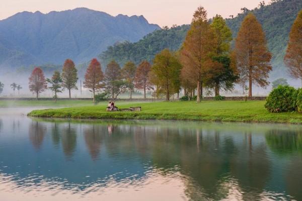 員山福園蜊埤的落羽松美景。(圖由石姓攝影老師提供)