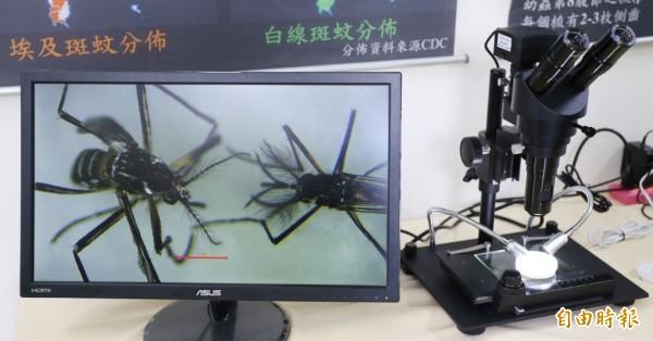 「國家蚊媒傳染病防治研究中心」台南研究中心中心,有高規格研究設施。(記者洪瑞琴攝)
