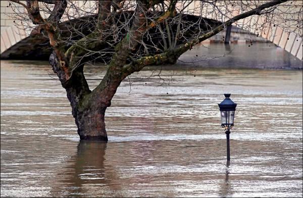 連月豪雨導致法國巴黎塞納河水位暴漲,河堤邊的路樹與街燈都遭淹沒僅剩半截。(路透)