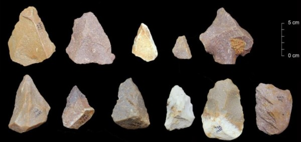 刊載於最新一期《自然》期刊的考古研究結果,可能撼動「人類起源自非洲」的論點。(擷取自印度遺產教育中心)