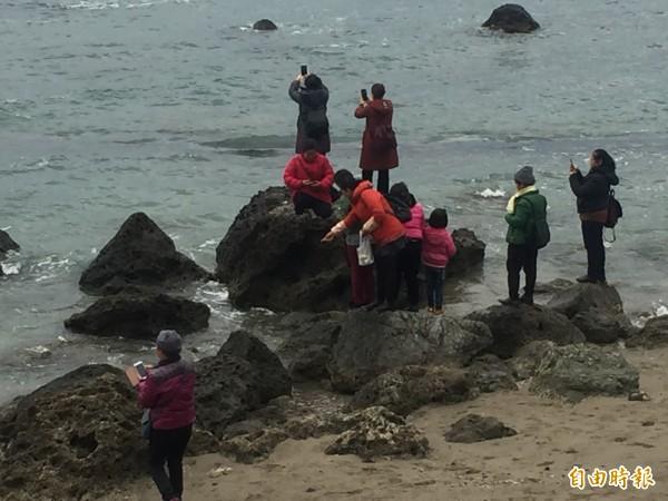 富山保育區4月起將禁止餵魚。(記者張存薇攝)