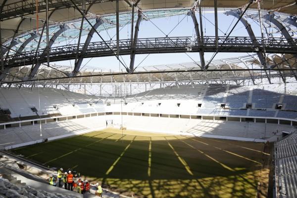 2018年世界盃足球賽6月將在俄羅斯開踢,該國農業部官員擔心,足球賽期間,俄羅斯的足球場草地可能面臨「蝗災」侵襲。(美聯社)