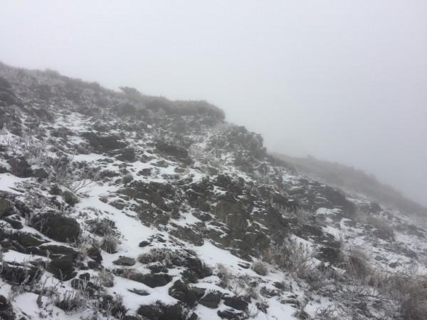 寒流來襲,合歡山已開始飄下白雪。(記者佟振國攝)