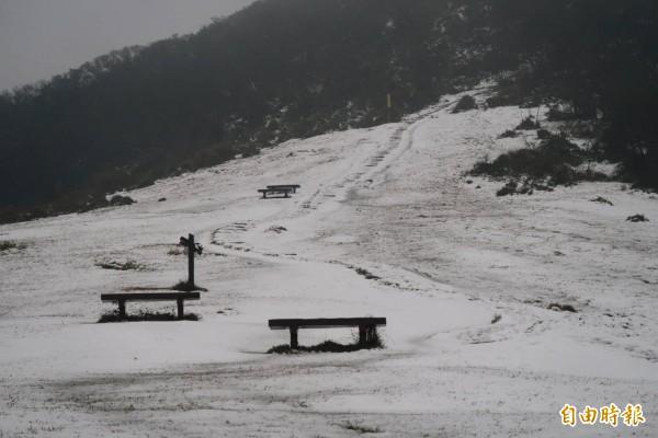 擎天崗石梯嶺迎來雪景,大草原蓋上白雪後,就像座天然滑雪場。(記者鹿俊為攝)