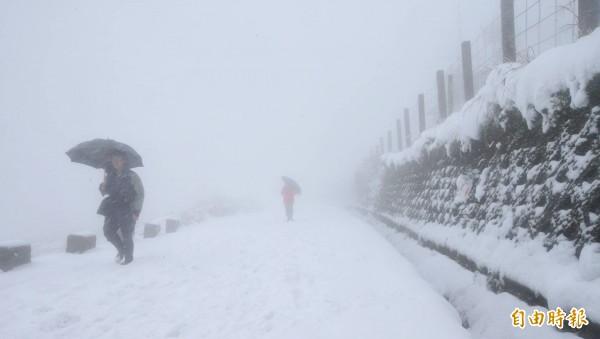 大屯山大雪紛飛,一片白茫茫。(記者劉信德攝)