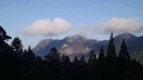 阿里山國家森林遊樂區內海拔2663公尺的大塔山,山頭覆蓋一層白雪。(林務局嘉義林管處提供)