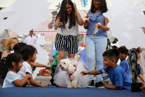 美國研究發現,若家長在孩子幼時給予寵物照顧,能提高孩子成年後成為素食主義者的機率。(路透)