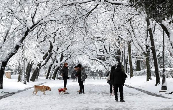歐洲近日遭遇「來自東方的怪物」寒流,連義大利羅馬都罕見地颳起風雪,但緯度更高的北極圈竟大幅變暖。(路透)