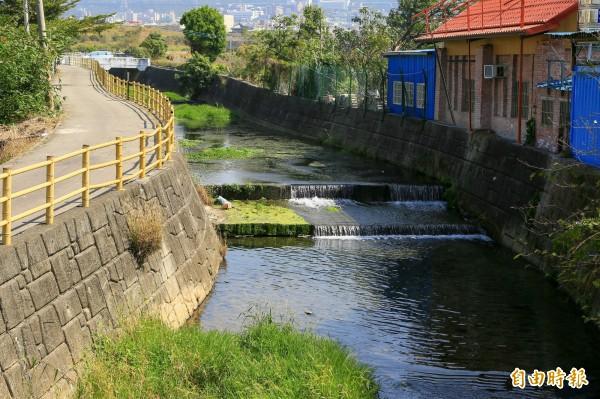 沙鹿區南勢溪擁有自然湧泉,生態資源豐富。(記者歐素美攝)