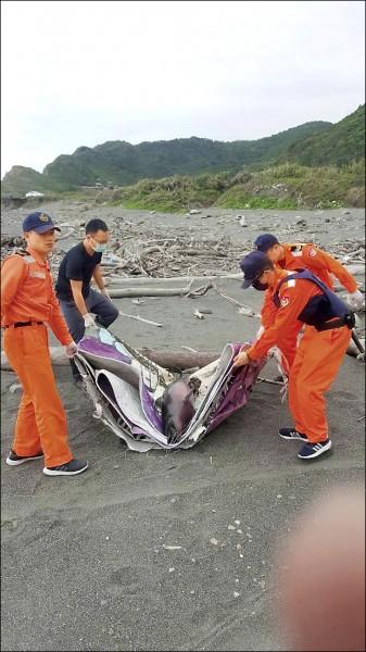 擱淺死亡的鯨豚。(海巡署東部地區巡防局第一二海岸巡防總隊提供)