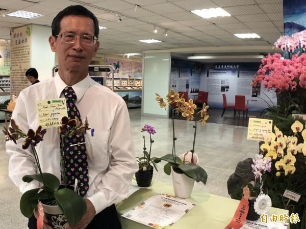 農學院長陳福旗所育成的各式蝴蝶蘭也獲多項獎。(記者羅欣貞攝)