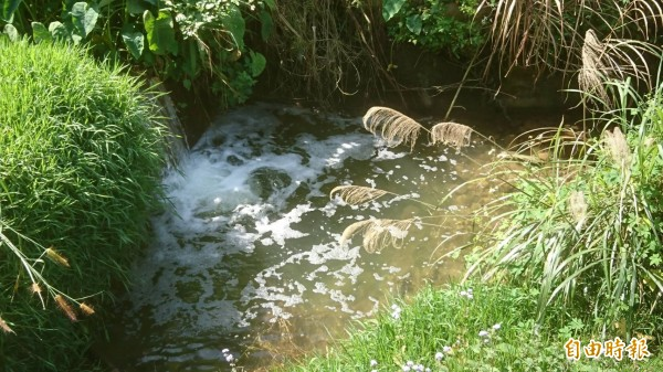 新竹縣政府環保局官員到場稽查,發現泡沫主要出現在溪流跌水處,現場有輕重不等的消毒水味。(記者黃美珠攝)
