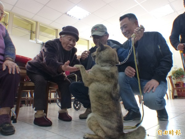 立法委員楊鎮浯(右1)、台北市陪伴犬協會理事長蔡文揮(右2)帶著陪伴犬在金門「大同之家」與長輩們同歡。(記者吳正庭攝)