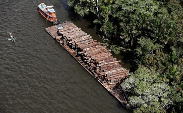 亞馬遜雨林無人區發現消失逾600年的村落。(路透)