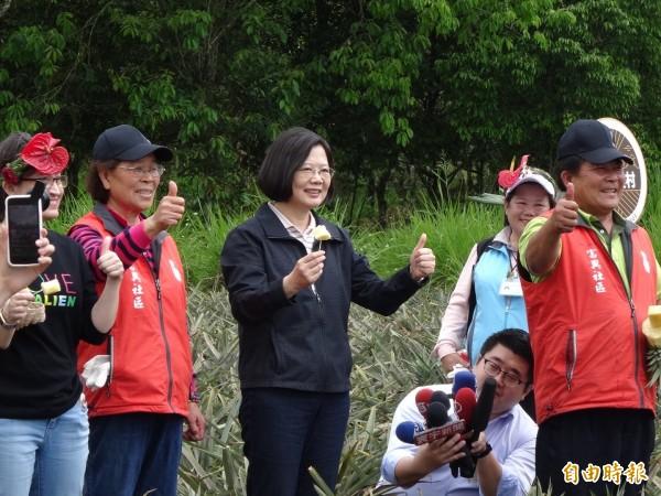 蔡英文總統今天上午與媒體早餐會,接著到富興村鳳梨公園參訪鳳梨博物館,還到田裡吃農民現殺鳳梨。(記者蘇芳禾攝)