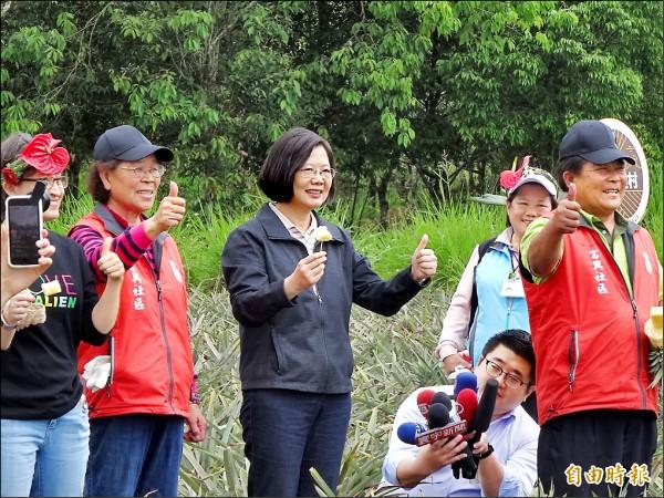 為振興震災後的花蓮觀光產業,總統蔡英文昨日帶媒體團參訪富興村鳳梨公園,當地農民現切鳳梨,蔡總統品嚐後豎起大拇指,大讚好吃。 (記者蘇芳禾攝)