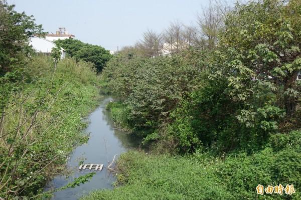 鹿港國家歷史風景區的第一步,就是鹿港溪再造計畫動工,目前河道最窄處才1米多。(記者劉曉欣攝)