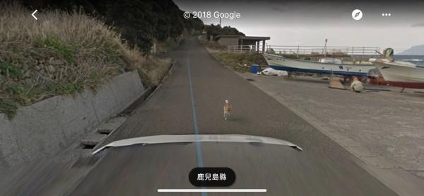 街景車經過當地愛犬公園時,驚動當地1隻柴犬,街景車則記錄下牠沿途追趕的模樣,讓網友認為相當可愛。(圖擷取自Google街景)