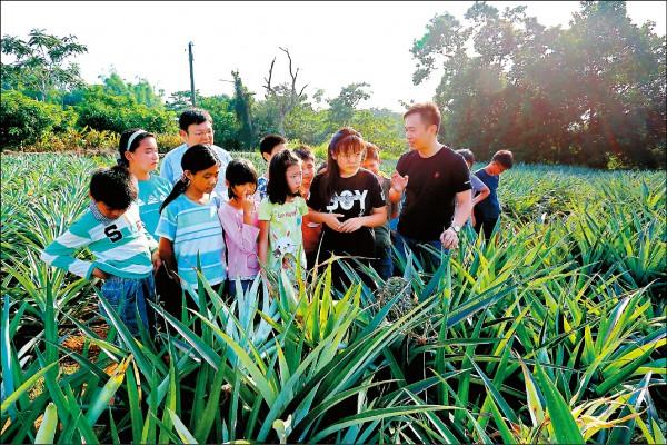 饗食主題由農會人員帶領學子親自走訪鳳梨園,認識鳳梨種植過程。(記者李惠洲/攝影)
