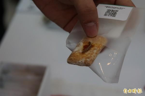 蟲蟲餅乾,你有勇氣吃嗎?(記者詹士弘攝)