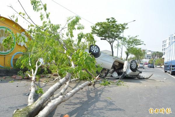 該輛轎車行經花壇鄉省道台一線時接連撞斷路樹、燈桿後翻覆。(記者湯世名攝)