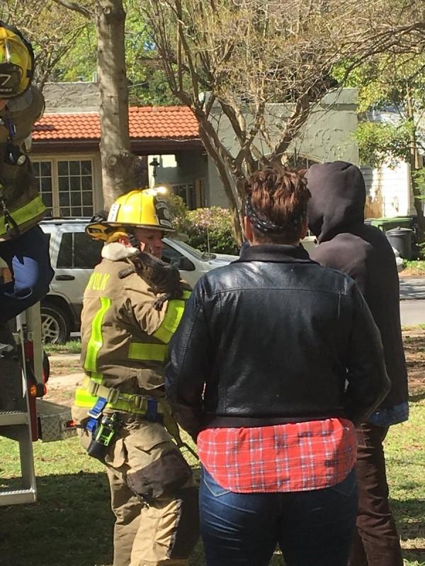 貓咪被救下來後趴在消防員的肩膀上。(圖擷自Norfolk Fire-Rescue推特)