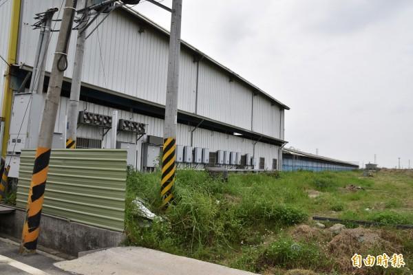 業者要在舊養雞場旁新建一場近7000平方公尺的雞舍,可飼養7萬多隻蛋雞。(記者黃淑莉攝)