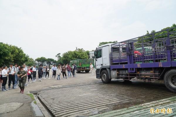 新竹肉品市場獲農委會防檢局評鑑為「特優場」,今天吸引全國逾百家公私營肉品市場等單位,觀摩學習進出車輛及繫留場消毒作業情形。(記者廖雪茹攝)