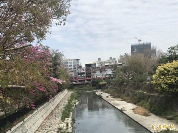 郭清華指出,竹溪每天6萬噸的民生廢水,是整治安平運河的盲點。(資料照)