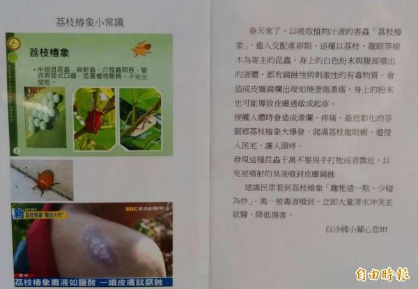 花壇鄉白沙國小以張貼海報等方式,要求學生們遠離荔枝椿象「少碰為妙」。(記者湯世名攝)