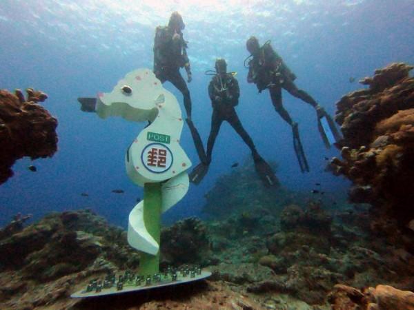 綠島豆丁海馬郵筒深達11米半。(潛水教練俞明宏提供)