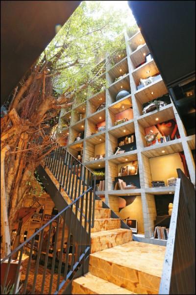 來自樹木銀行的3米老榕樹,樹齡超過百年,當初還得出動大吊車才成功把重達10噸的榕樹「搬家」到書屋。(記者沈昱嘉/攝影)