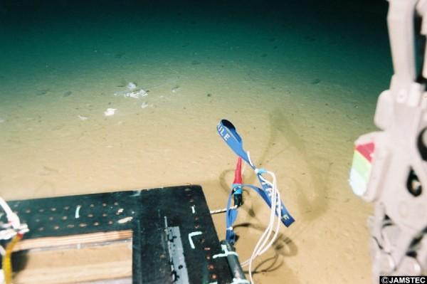 就連在目前地球上已知的最深海溝——太平洋中的馬里亞納海溝(深1萬1034公尺),在1萬898公尺的地方,也出現塑膠類垃圾的蹤影。(圖擷取自海洋研究開發機構)