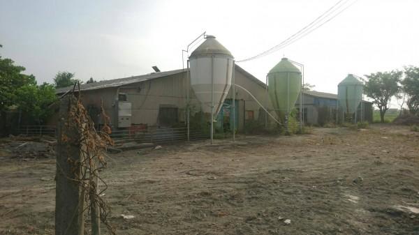 水林鄉尖山腳社區旁一處停養多年的養豬場,有業者申請設置可能恢復飼養,引起居民恐慌。(尖山腳反大型畜牧場自救會提供)