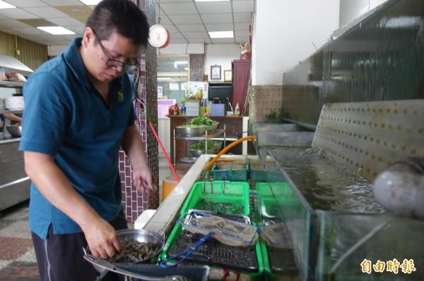 彰化線西源泉活海鮮餐廳有水族箱,強調「現流仔」尚青。(記者劉曉欣攝)