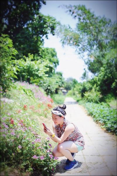 從貓貍山公園步行至隧道,沿路充滿綠意和花香,粉嫩的小花讓人忍不住想拍照收藏。(記者李惠洲/攝影)